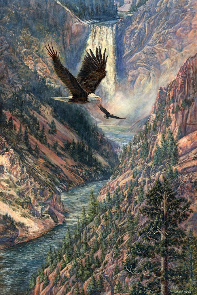 An eagle soars through river valley
