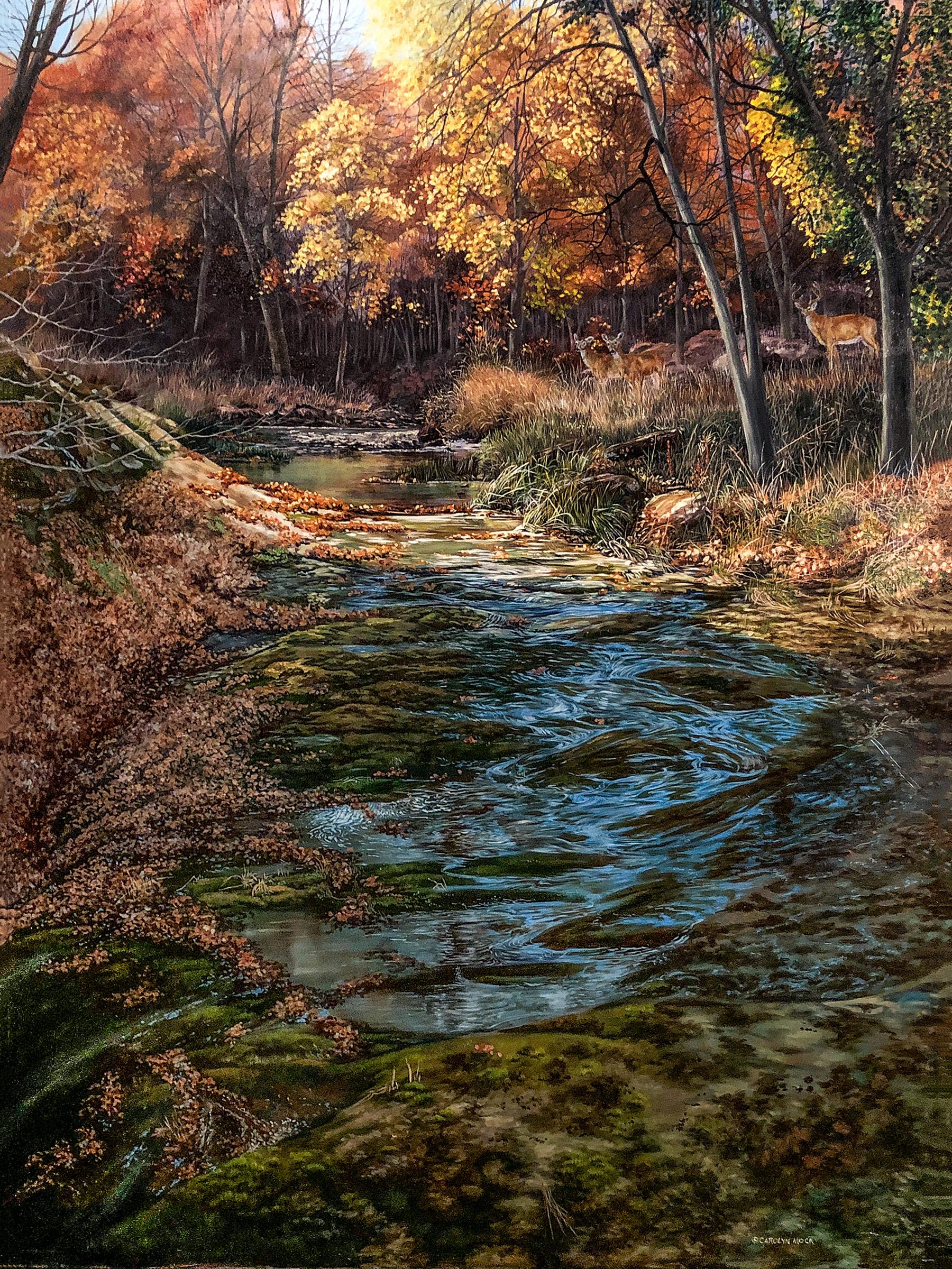 A stream runs through a field as the leaves begin to change