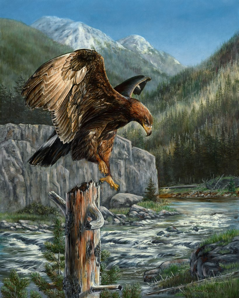 An eagle descends to land on a tree