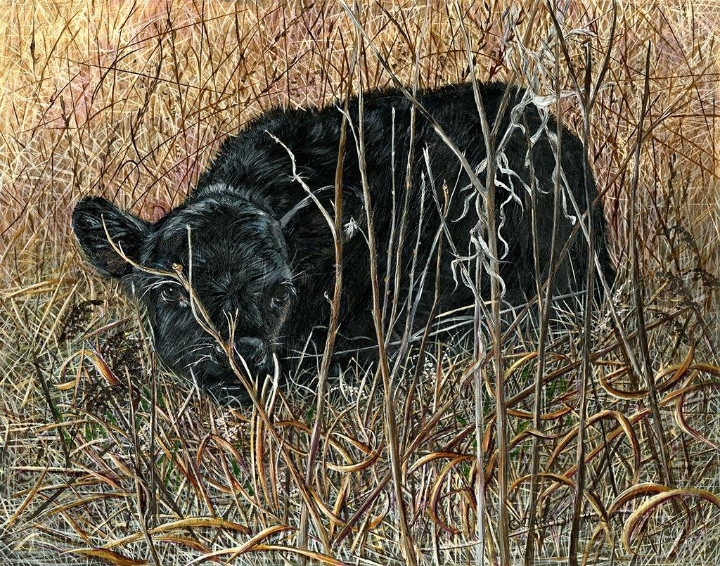 A calf hides in some tall grass
