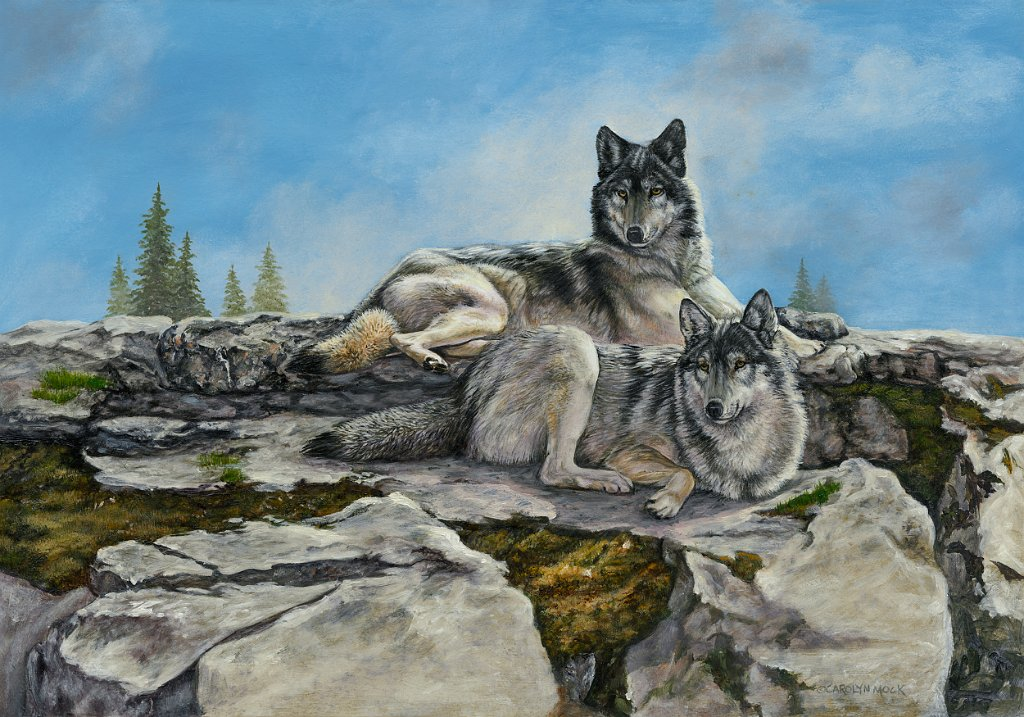 A pair of wolves sit atop a rocky mountain